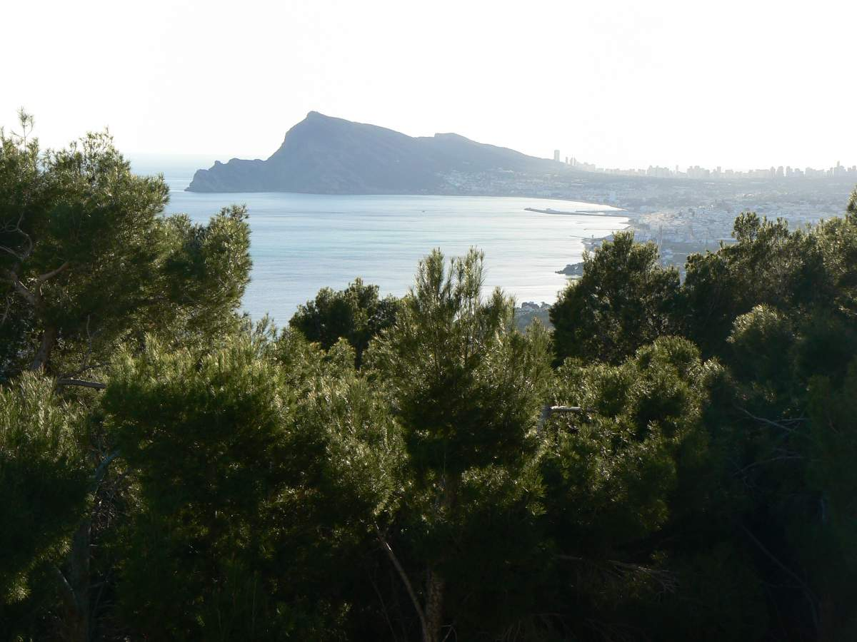 Sunny plot with sea views in Altea Hills